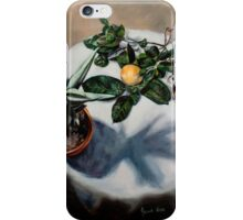 Quiver Tree, Grapefruit and Nuts iPhone Case/Skin