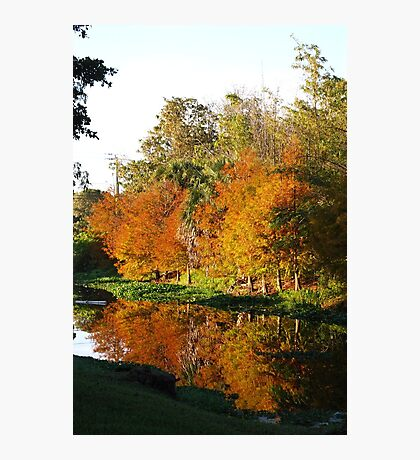 December Morn on Deerfield Creek Photographic Print