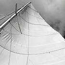 Mainsail by Leon Heyns
