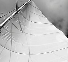 Mainsail by Leon Heyns