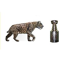 """""""The Hunt""""                        On the hunt for the Stanley Cup Photographic Print"""