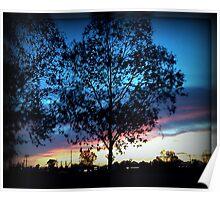 Tucson Sunset Poster