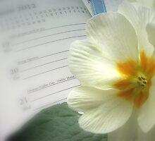 Spring Equinox by FelicityB