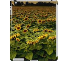 Sunflower Nation iPad Case/Skin