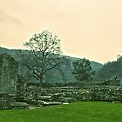 Tintern Abbey Ruins by James Taylor