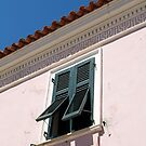 Green Shutters by lapoota72