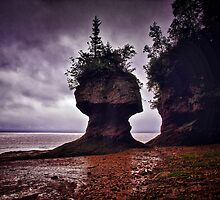 Hopewell Rocks by Kathy Weaver