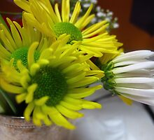 Daisies in a tin by MarianBendeth