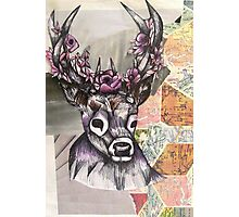 Stag Map Illustration Photographic Print