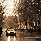 Rain - Greenwich Village - New York City by Vivienne Gucwa