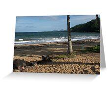 Bingil Bay - Late Afternoon Greeting Card