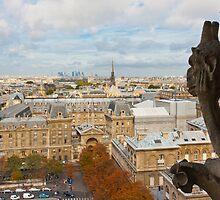 Watching Paris by Dan Lauf