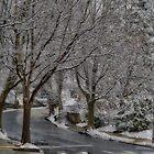 Wet Snow by LudaNayvelt