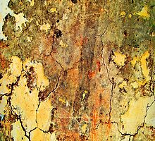 Peeling Paint 1 by rcurtiss000