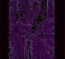USGS Topo Map Washington State WA Center 240416 1953 24000 Inverted by wetdryvac