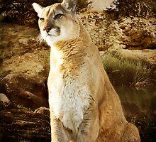 Cougar by KBritt