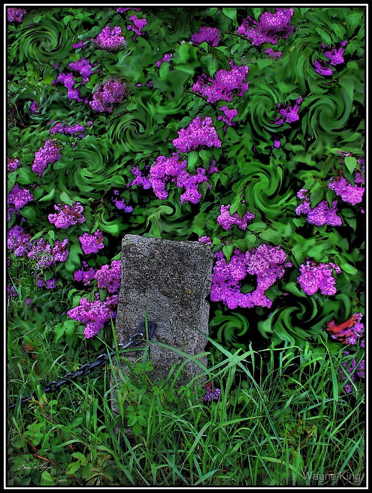 A Dark Wind in the Lilacs by Wayne King