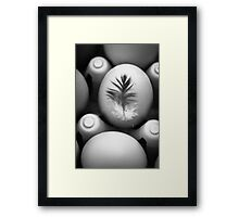 Feathered Egg in Black and White Framed Print