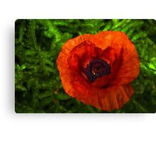 Red Poppy - Vibrant, Bold and Cheerful Canvas Print