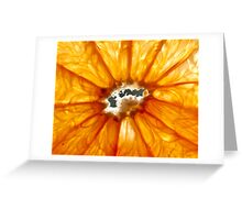 Grapefruit Greeting Card