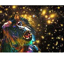 Starry, Starry Funky Monkey Photographic Print
