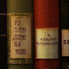 libros by Lorena María