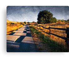 Along Coyote Creek Regional Bicycle Trail Canvas Print