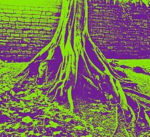 Twisted Tree Psychedelia 2 by Phil South