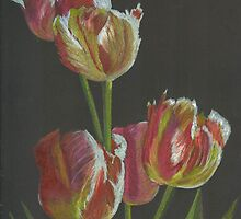 parrot tulips by Elena Malec
