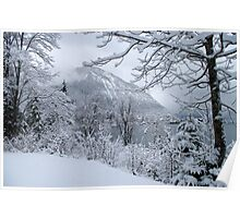 winter at walchensee Poster