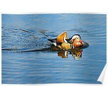 Mandarin Duck ~ Mangerton Mill Poster