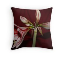 My Amaryllis Throw Pillow