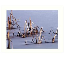 Sticks in Frozen Pond Art Print