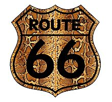 Vintage Route 66 US sign in snakeskin Photographic Print