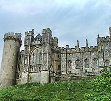 Arundel Castle From The East by Dave Godden