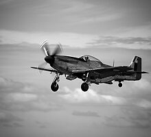 P-51D Mustang at Point Cook by Pauline Tims