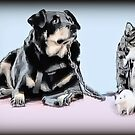 """✿♥‿♥✿ """"YES WE LUV ONE ANOTHER WHY CANT WE ALL GET ALONG""""? ✿♥‿♥✿    by ✿✿ Bonita ✿✿ ђєℓℓσ"""