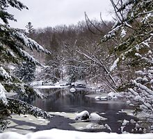 After the Storm on Contoocook River by Monica M. Scanlan