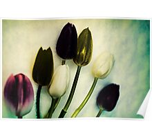 Tulip Ghosts Poster