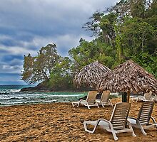 Panama. Bocas del Toro. Red Frog Beach. by vadim19