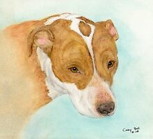 Red Nosed Pit Bull Dog Cathy Peek Animal Art by Cathy Peek