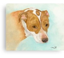 Red Nosed Pit Bull Dog Cathy Peek Animal Art Canvas Print