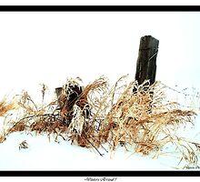 Winters Arrival ! by Jan Siemucha