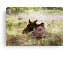 Painted Moose Canvas Print
