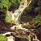 Mountainous Stream by Donny Clark