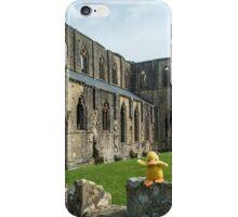 Duck at Tintern Abbey iPhone Case/Skin