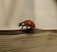 A little book bug by vigor
