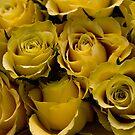 Bouquet de soleil! by Marie Moriscot