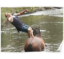 Trampoline Horse Poster