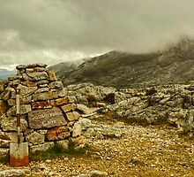 Conservation Cairn by Jamie  Green